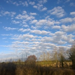Carlie Lee Sky over Horley