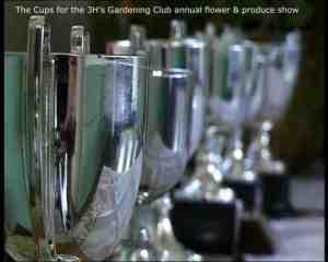 3 HHH Cups
