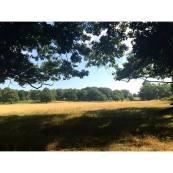 Horley end of summer